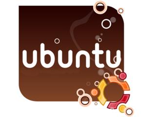 Pesquisa mostra que maioria dos usuários Linux também adota o Windows