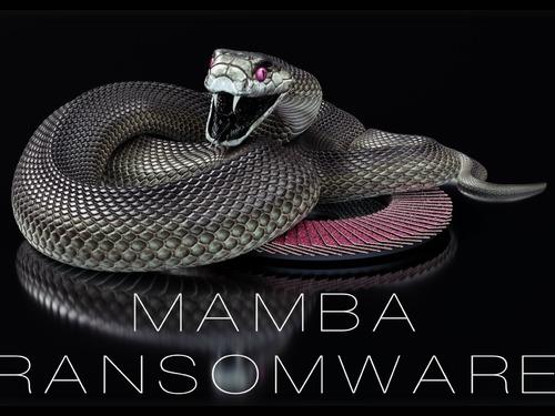 Ransomware Mamba volta a atacar corporações e um dos alvos é o Brasil